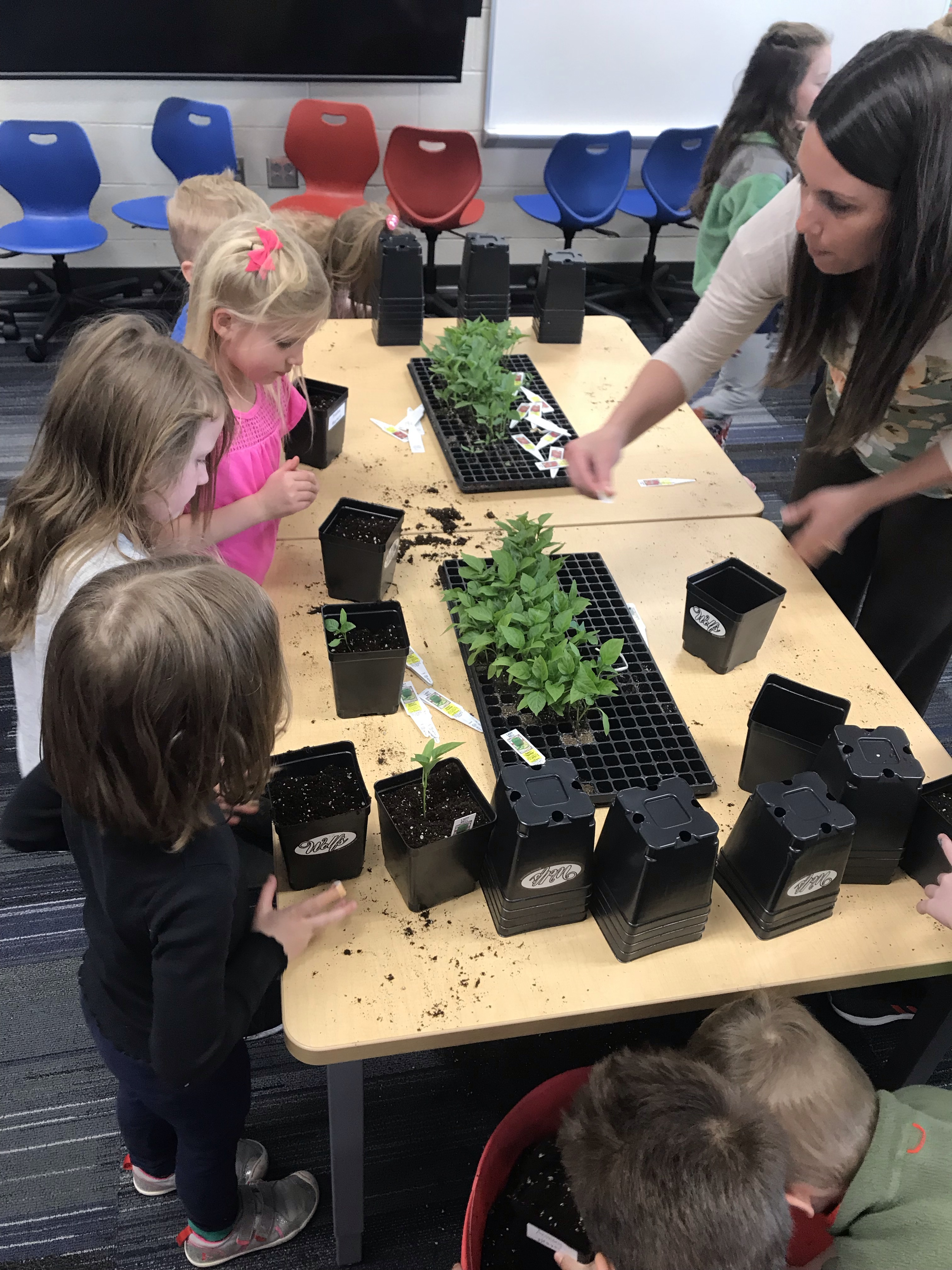 students plant flowers